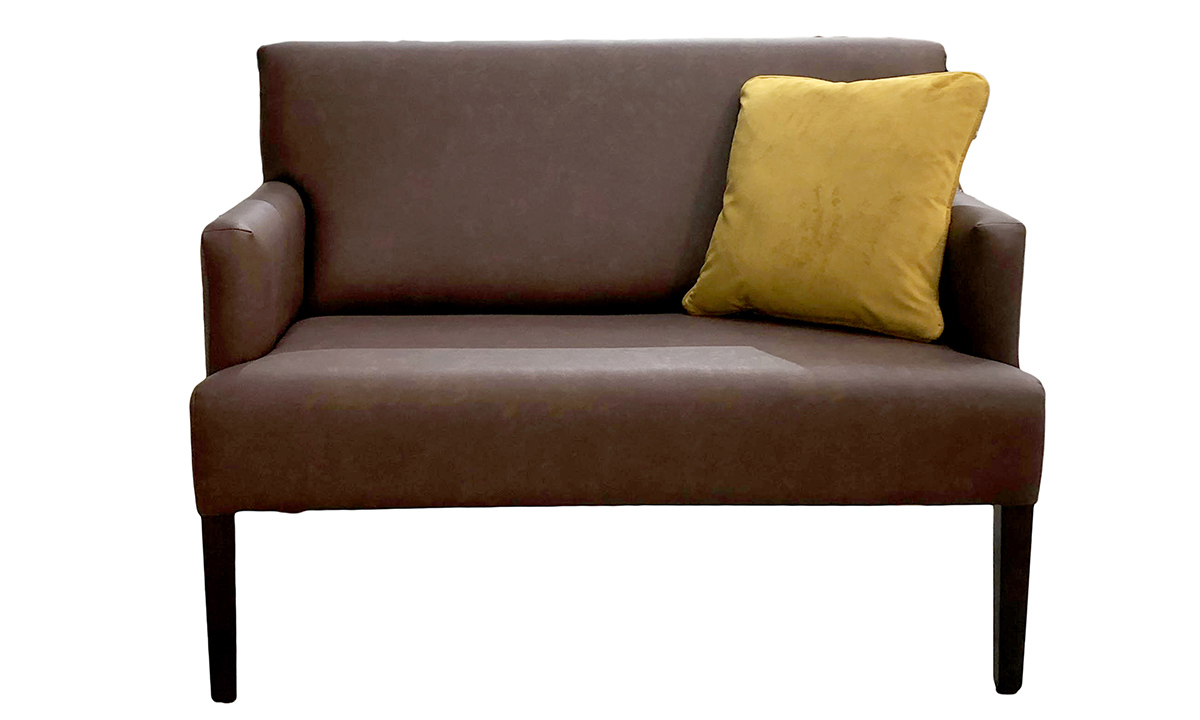 Lisa 2 Seater in Infinity Faux Leather, Platinum Collection Fabric